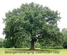 Daalhuizen-Velp